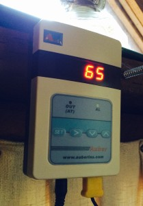 Remote Digital Flue Thermometer
