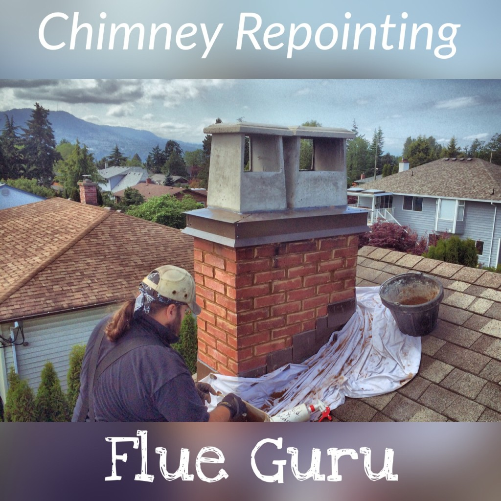 chimney caps repointing chimney